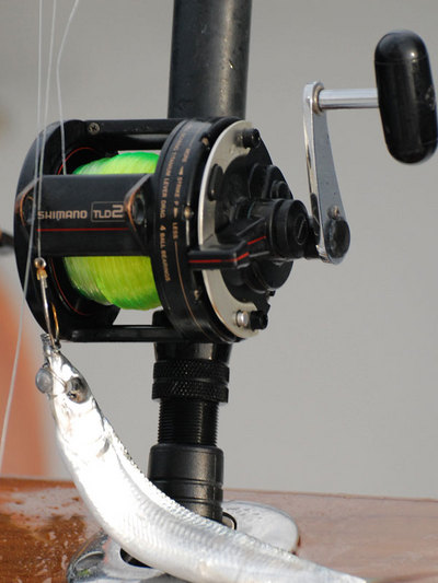 Trusty TLD20 on a Crowder Tournament Sailfish Rod