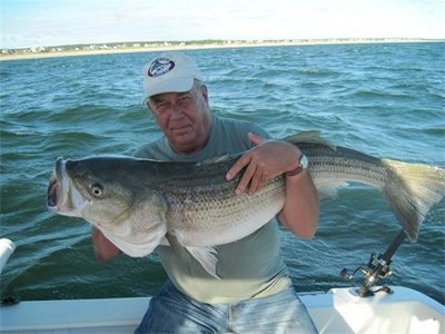 This 46 pound bass fell to a live eel aboard the charter boat Miss Loretta.