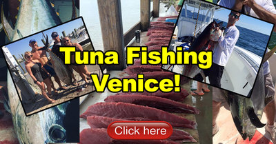 Tuna fishing