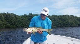Snook caugth in Tampa Bay Flats