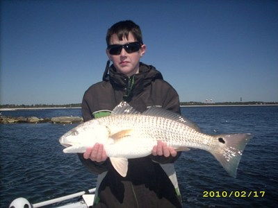 Destin Fishing Report on Fishing Charters Area Reporting Destin To Perdido Key Florida Bio From
