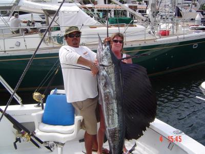 101 inch Sailfish!