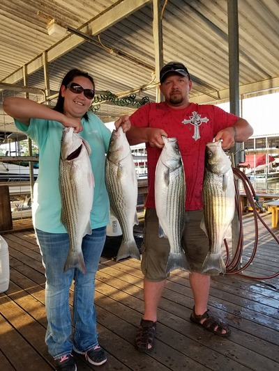 Nice Texoma Stripers