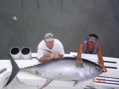 Kostner's 250 lb Yellowfin tuna