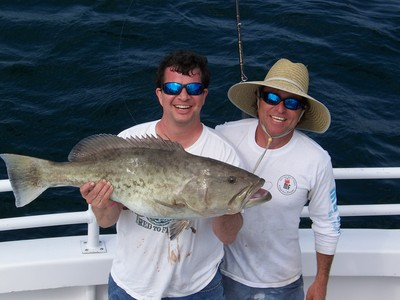 Grouper Anyone?