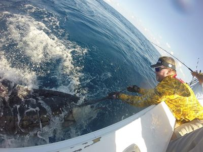 Mark Davis of Big Water Adventures Releases an Enormous Sailfish