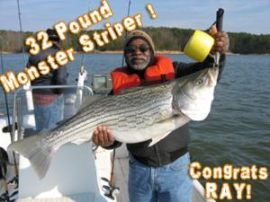 32 Pound Allatoona Striper