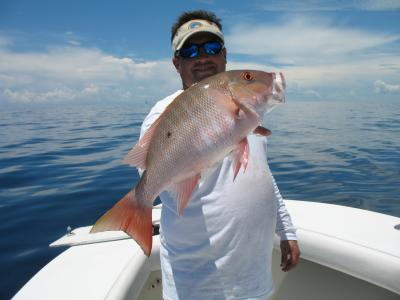 Tasty Mutton Snapper