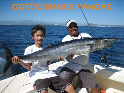 The yellowfin tuna were biting well for San jose del cabo fishing report