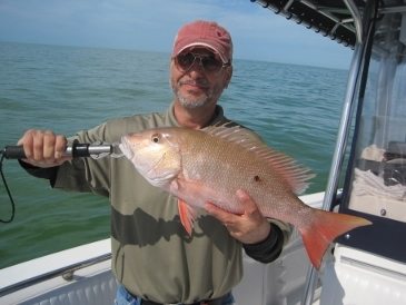 22-inch mutton snapper