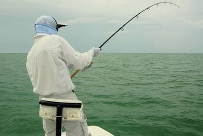 Denis Clohisy, from WI, battles a tarpon in the coastal gulf in Sarasota while fishing with Capt. Rick Grassett.