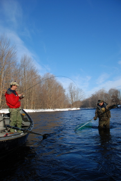 Salmon river oswego river fishing report for Oswego river fishing