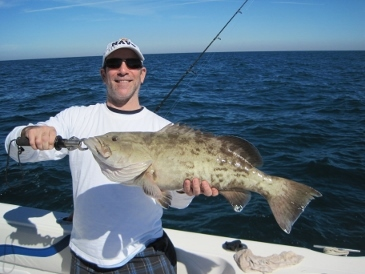 29-inch, 12-lb. gag grouper released
