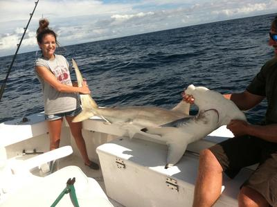 Big hammerhead caught shark fishing