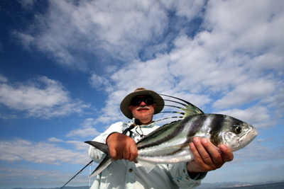Another wonderful Baja Rooster fish caught while fly fishing