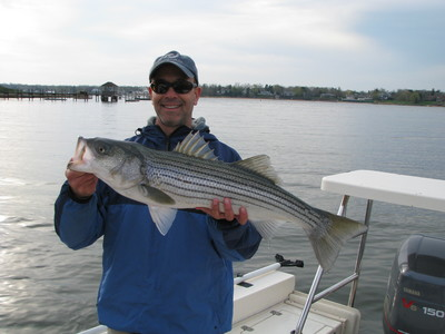 New Jersey striper guide-reel therapy
