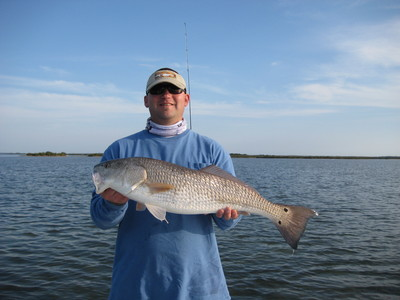 Sweet Mosquito Lagoon Redfish!