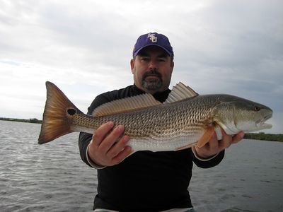 Nice Sight Fished Redfish By Pat From Texas