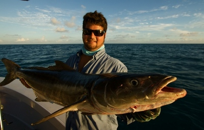 Capt. Jack Walker and the big cobia.