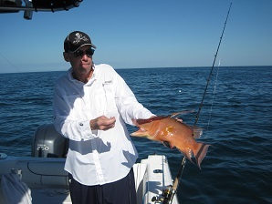 18-inch hogfish on shrimp