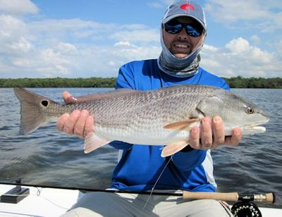 Joe Koss, from Long Island, NY, with a nice red caught and released on a Grassett Flats Minnow fly while fishing Sarasota Bay with Capt. Rick Grassett.