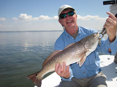 Joe McGurrin's Sarasota Bay CAL shad redfish caught and released with Capt. Rick Grassett.