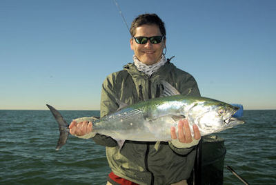 Kyle Ruffing's Sarasota fly albie caught with Capt. Rick Grassett.