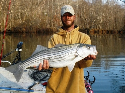 Lake Lanier Fishing Report on Jon With A Nice Lake Lanier Striper