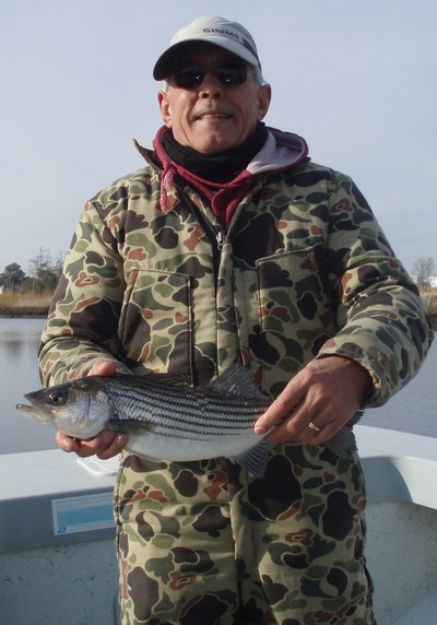 how to catch striped bass in the cape fear river