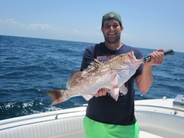 25-inch red grouper, on a baitfish