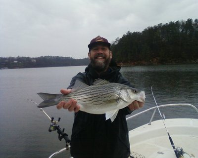 Lake allatoona fishing guides report for 3 26 for Allatoona fishing report
