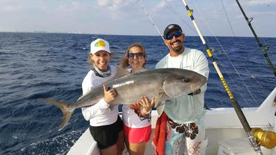 huge amberjack caught deep dropping