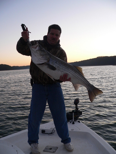 Lake allatoona and carters lake fishing report for oct 24 for Carters lake fishing report