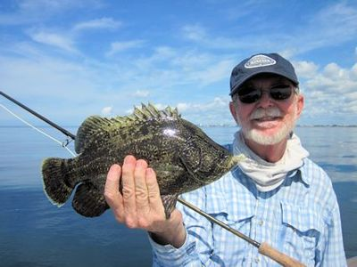 Rusty Chinnis, from Longboat Key, FL, with a tripletail caught and released on a fly while fishing the coastal gulf in Sarasota with Capt. Rick Grassett.