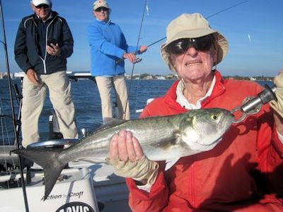 Tom Lamb, from Geneva, Switzerland, with a 4-lb bluefish caught and released on a CAL jig with a shad tail while fishing Sarasota Bay with Capt. Rick Grassett.