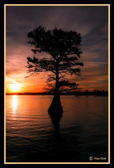 Caddo lake report for Caddo lake fishing report