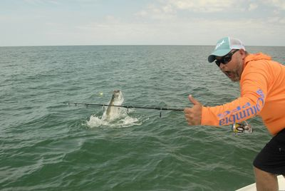 Cliff Ondercin, from Sarasota, FL , jumps a tarpon caught and released on a live bait in the coastal gulf in Sarasota while fishing with Capt. Rick Grassett.