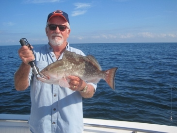 near-20-inch red grouper released, Bonita beach, SWFL