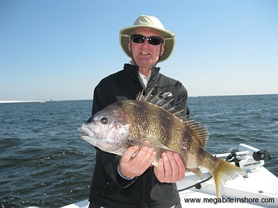 Dave with a Monster Sheepshead