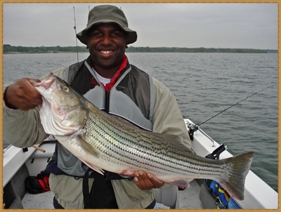 Big female Striper already spawned