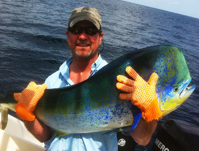 Costa Rica Offshore Fishing Picks Up