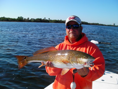 Pro Cure Redfish Attractant