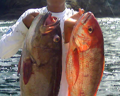Inshore fishing from Flamingo Costa Rica