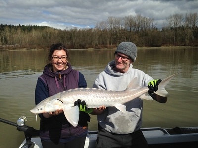Good times Sturgeon fishing early April