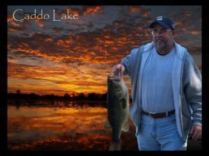 Caddo Lake Bass Feeding Frenzy