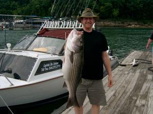 Lake cumberland striper fishing for Lake cumberland striper fishing report