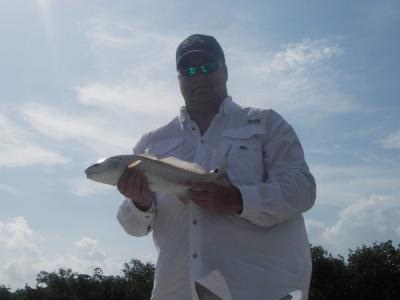 Rob Harris Redfish