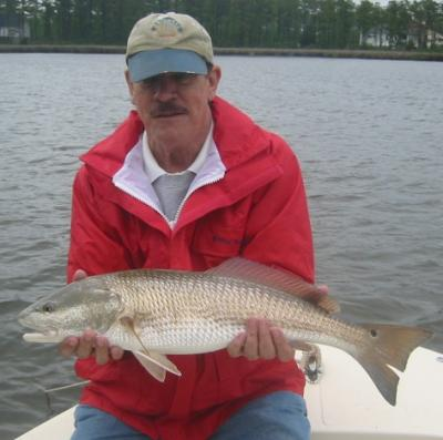 Summer fishing pamlico sound neuse river for Pamlico sound fishing report