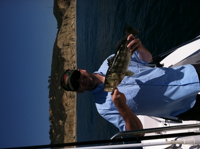 Diego Fishing Report on San Diego   S Late Summer Fishing