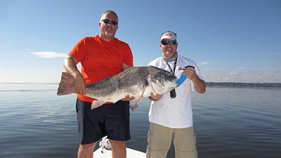 Greg was all smiles after landing this Monster Black Drum
